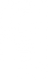 logo-nuovas1-footer